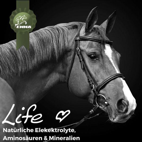 Elektrolyte & Mineralien Pferd, Energie & Gesundheit für`s Pferd, Ergänzungsfutter 2,5 Kg