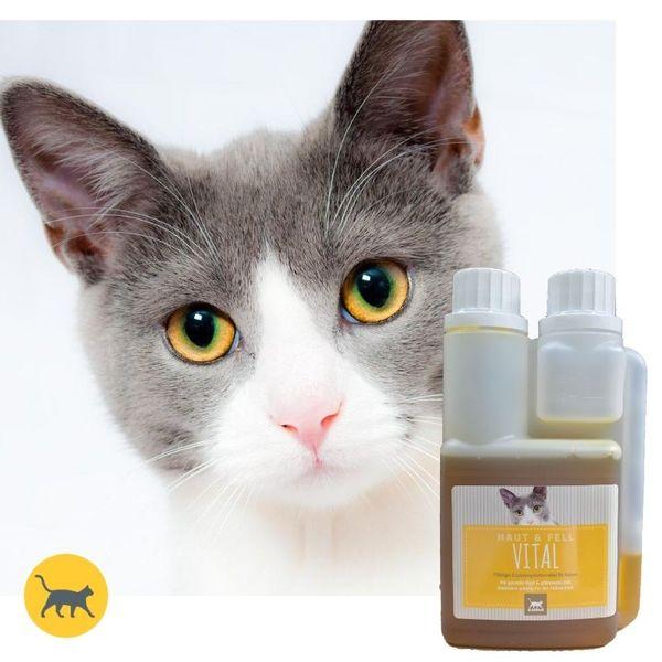 EMMA Leinöl & Distelöl I kalt gepresstes Futter Öl I Reich an ungesättigten Fettsäuren (Omega 3 6) I Barf-Öl I für Hunde & Katzen I Plus Vitamin E 250 ml