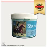 Kühlgel Pferd, Pferdepflege Kältegel für die Pferdebeine-Premium - 500 ml