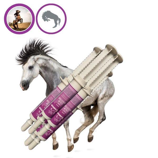 EMMA® Magnesium Pferd I Calm Booster I zur Beruhigung Nerven I L-Tryptophan Aminosäuren Paste I Angst Stress schreckhaftes Pferd I unterstützt Gelassenheit bei nervösen Pferde Pony 6  30ml