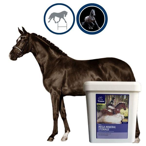 EMMA Mineralfutter komplex für Pferde I B-Vitamine & A,E,C,D, Biotin, Zink, Selen, Bierhefe I Hufwachstum & Fell Senior 5 Kg