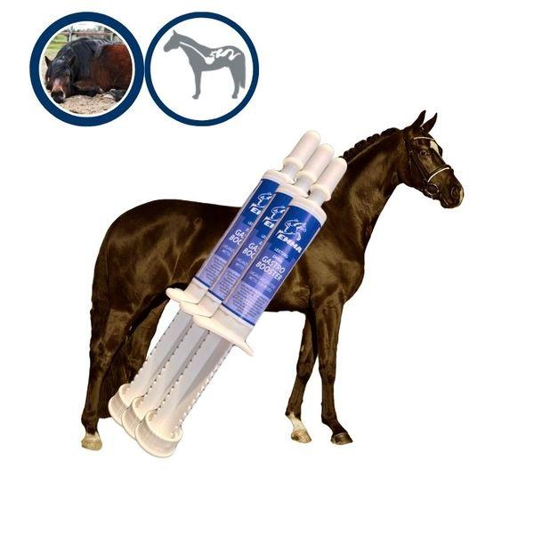 Gastro Booster, Zusatzfutter Für Magen Darm Trakt, Oralpaste für Pferde IGastro Booster ist ein energetisch hochwirksamer Stoffwechsel- booster.