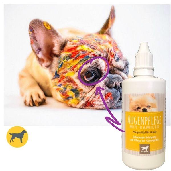 Augentropfen  I Augenpflege für Hunde I Augenreiniger I milde Augen-Reinigung I Reinigung & Pflege der Augen