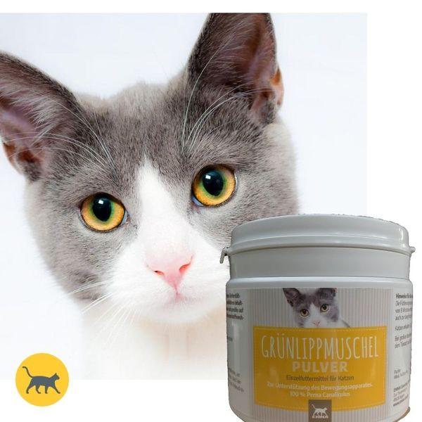 EMMA Grünlippmuschel-Pulver für Katzen I 250g I Grünlippmuschel-Extrakt I Gelenk-Pulver I Premium hochdosiert I Gelenke & Gelenkfunktion