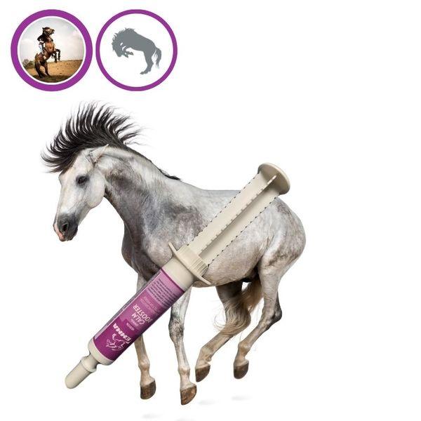 EMMA Magnesium für Pferde I Booster I Ergänzungsfutter für die Nerven, bei Stress, Angst I Vitamine für Beruhigung I Tryptophan 1 St