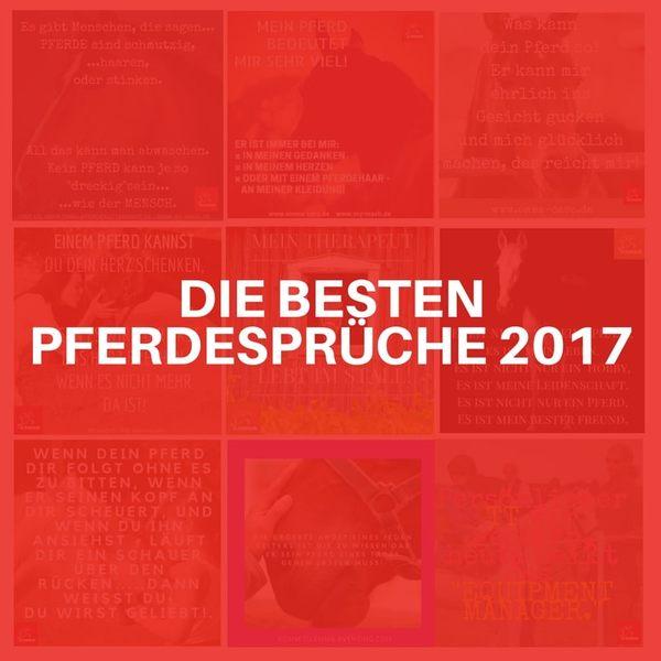 DIE-BESTEN-PFERDESPRU-CHE-2017