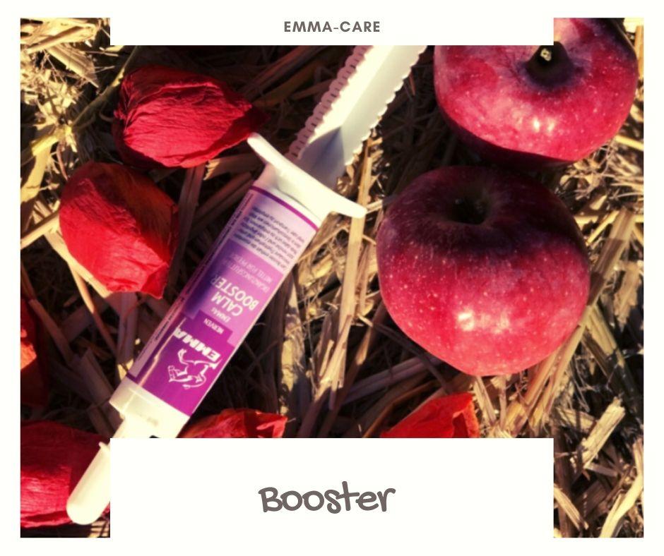 Booster Oralpaste