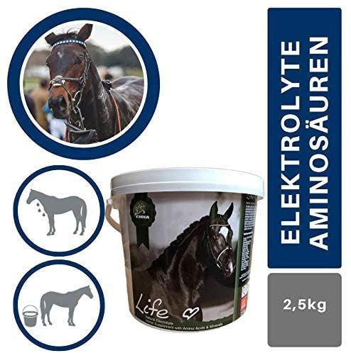 EMMA® Elektrolyte Pferd I Aminosäuren komplex I Mineralien Salze Vitamine I 100% natürlich I Mineralstoffe & Spurenelemente I nach Durchfall & schwitzen I Amino Energy Booster Pferde 2,5 kg