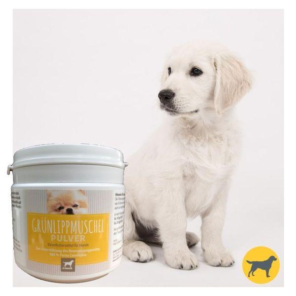 EMMA Grünlippmuschel für Tiere I 100% Pulver pur I einfacher dosierbar als Gelenktabletten Hund & Kapseln I Grünlippmuschelpulver enthält Omega 3-Fettsäuren I Knorpel Gelenke Gelenkfunktion 250gr