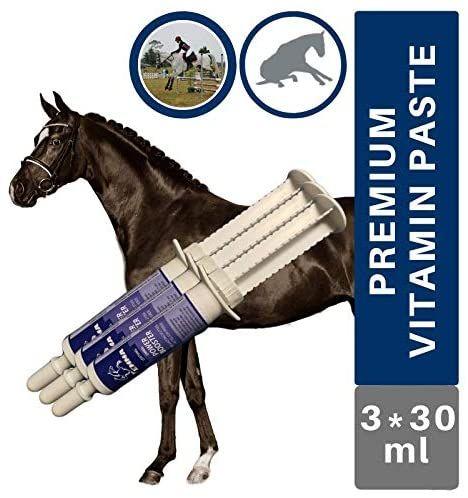 EMMA® Vitamin & Spuenelemente Paste I Booster Ergänzungsfutter I Vitamine E B-komplex B1 B2 B6 B12 Eisen Zink Lysin I Mineralien I Immunsystem stärken I hochdosiert Oldie Stuten Pferd 3St